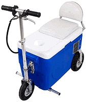Cruzin Cooler 300 Watt Electric Scooter